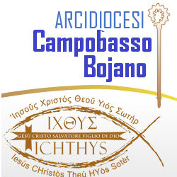 diocesicbbanner2